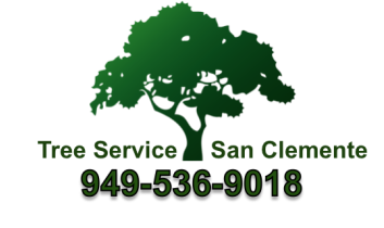 Tree Service San Clemente Tree Care, Tree Removal Orange County
